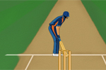 Super Cricket Games